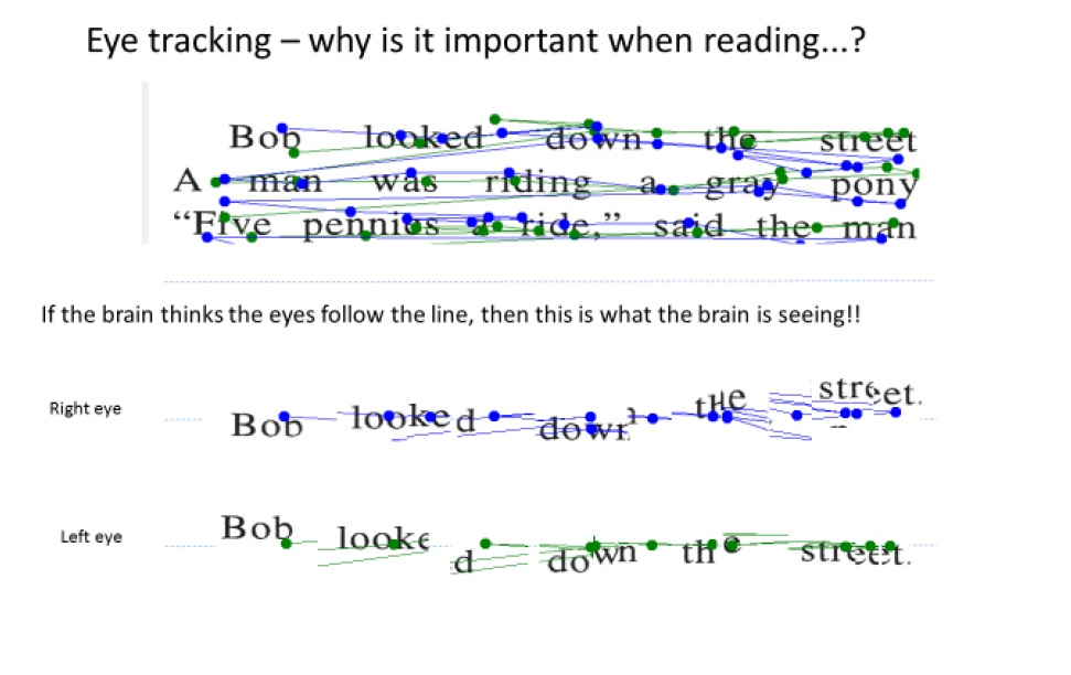 eye tracking testing, Shaylers Vision Centre